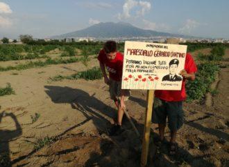 Masseria, Cgil: vince il buonsenso
