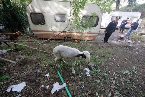 2025082_RNT_7588 25 mila rom nelle baraccopoli