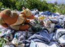 ABPH9893-130x95 La denuncia dei rifiuti illegali