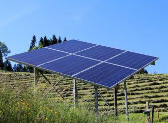 Rinnovabili, dalla vigna all'energia