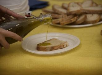 Un olio d'oliva pubblico per progetti solidali