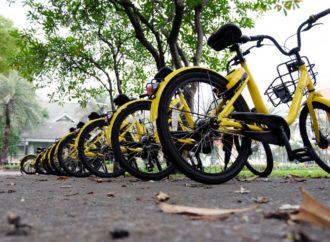 Boom per l'industria italiana della bicicletta