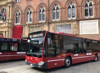 Bologna, bus gratis per 900 senza dimora