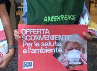 Greenpeace contro gli allevamenti intensivi